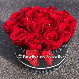 INFINITY RED ROSES - LARGE